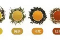 2020上海茶博会6月3日上海展览中心约您喝好茶
