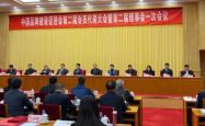 片仔癀荣列中国品牌建设促进会第二届副理事长单位