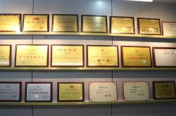 江苏省文化和旅游厅产业发展处处长陈劲松一行莅临泰丰文化调研